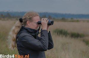 Andrea de Vries