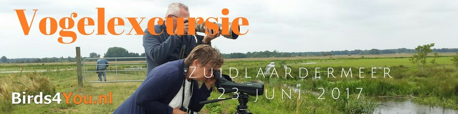 Vogelexcursie verslag Zuidlaardermeer 23 juni 2017 Drenthe en Groningen