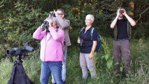 Excursie Grauwe Klauwier deelnemers