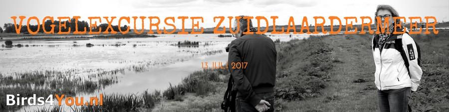 Vogelexcursie Verslag Zuidlaardermeer Drenthe en Groningen