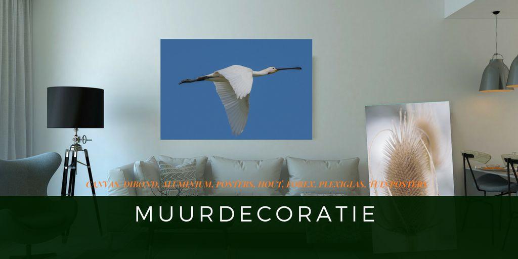 Muurdecoratie, Canvas, Aluminium, Dibond, Hout, Forex, Foto's, Posters, Plexiglas