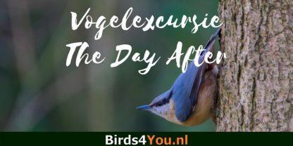 Vogelexcursie Friescheveen