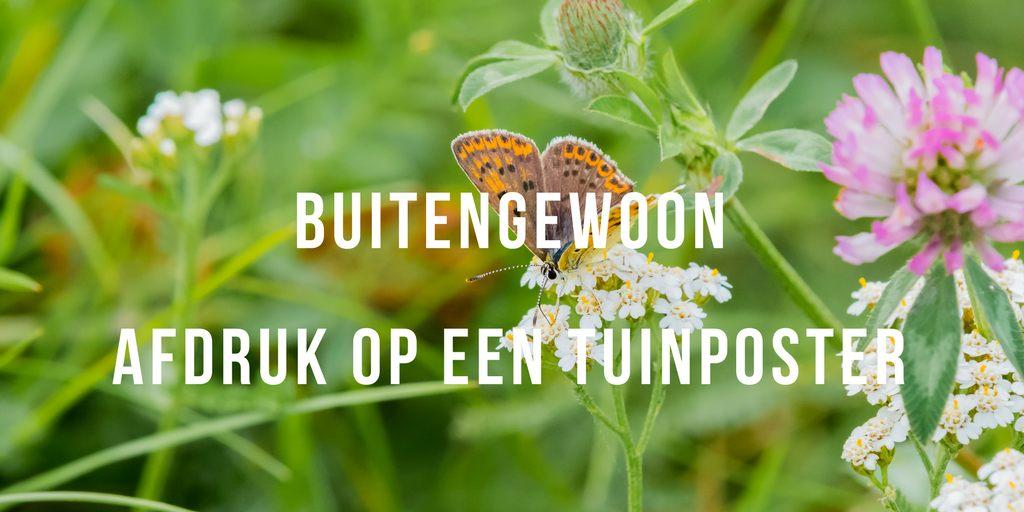 Foto op een Tuinposter , Afdruk op een Tuinposter