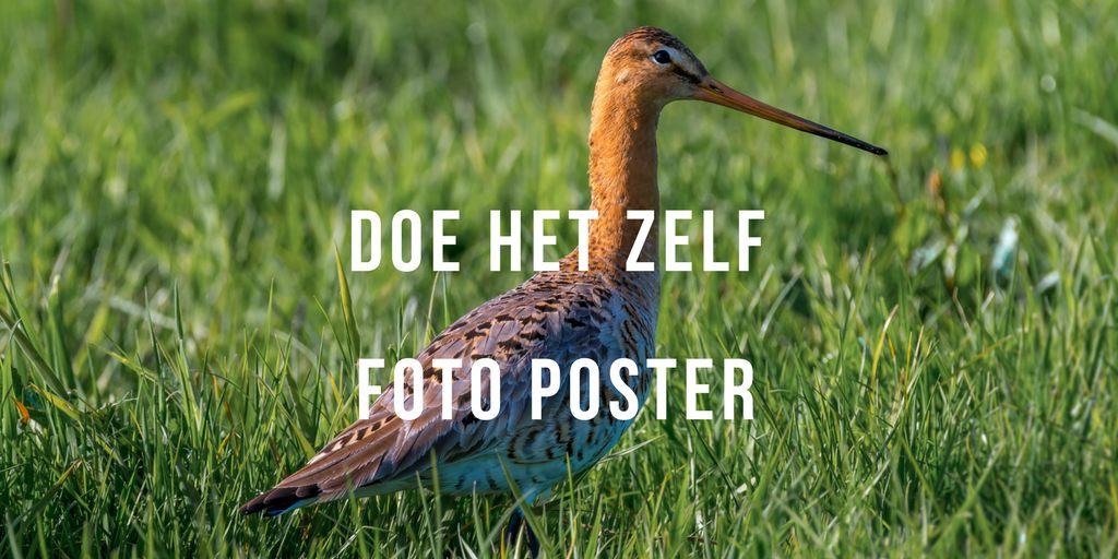 Foto op Poster