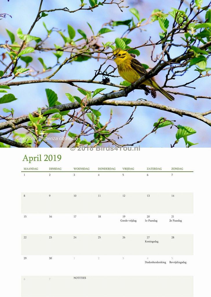 Vogelkalender April