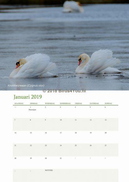 Vogelkalender Januari