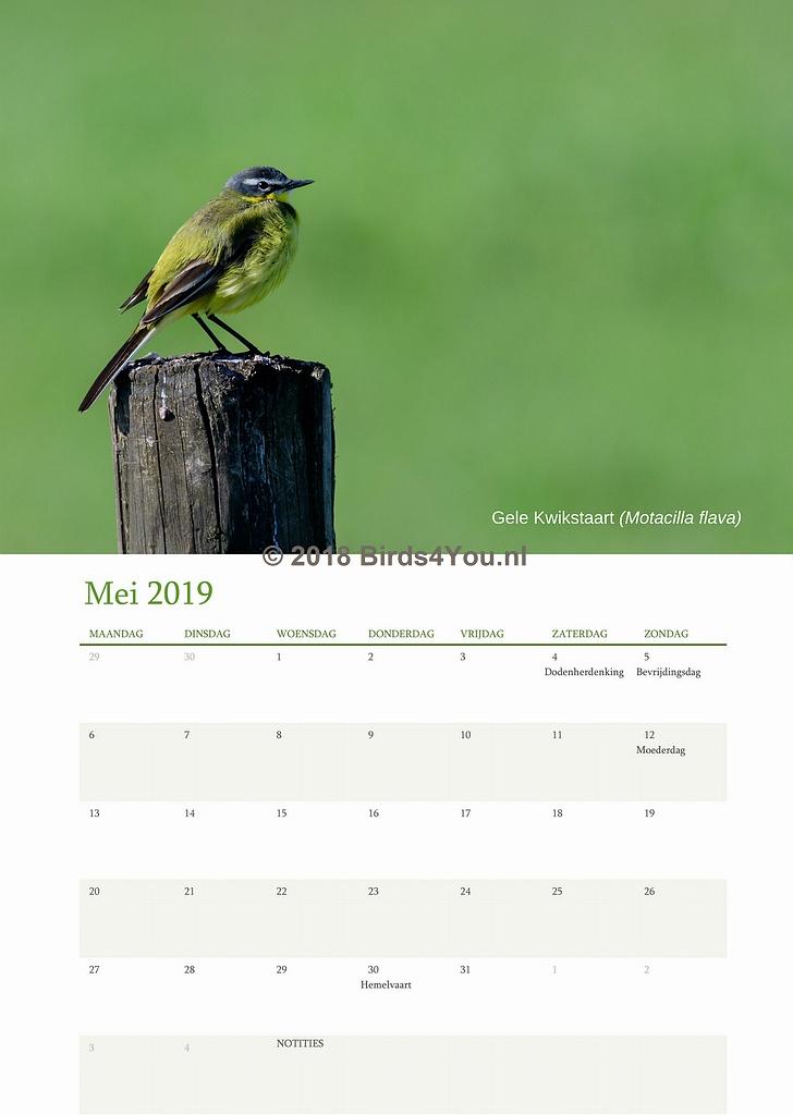 Vogelkalender Mei