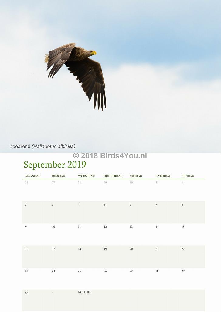 Vogelkalender September