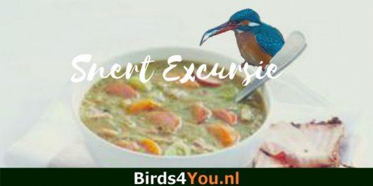 Snertwandeling / vogelexcursie