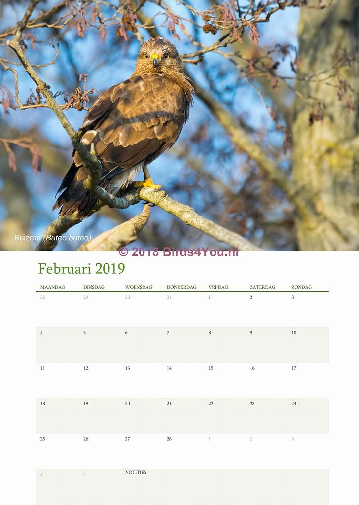 vogelkalender Februari