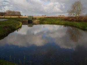 Vogelexcursie Lauwersmeer Gemaal