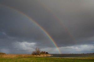 Vogelexcursie Lauwersmeer Vogelkijkhut