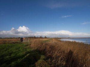 Vogelexcursie Lauwersmeer Wolken