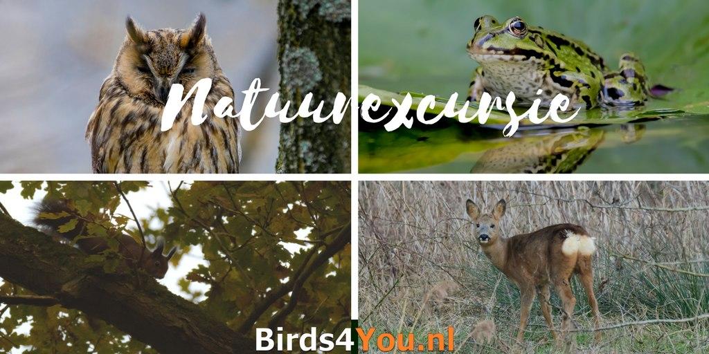 Natuurexcursie