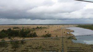 Vogelexcursie Fochteloërveen Uitzicht Uitkijktoren