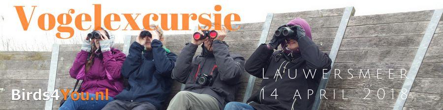 Vogelexcursie Lauwersmeer 14-04-2018