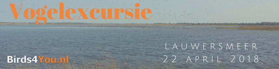 Vogelexcursie Lauwersmeer 22-04-2018