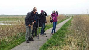 Vogelexcursie Lauwersmeer Deelnemers op pad