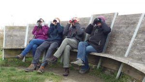 Vogelexcursie Lauwersmeer Ezumakeeg Noord