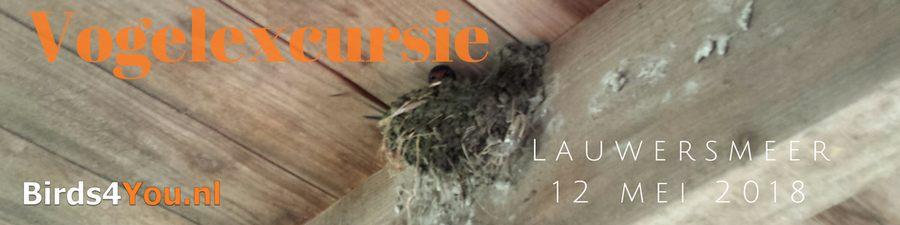 Vogelexcursie Lauwersmeer 12-05-2018