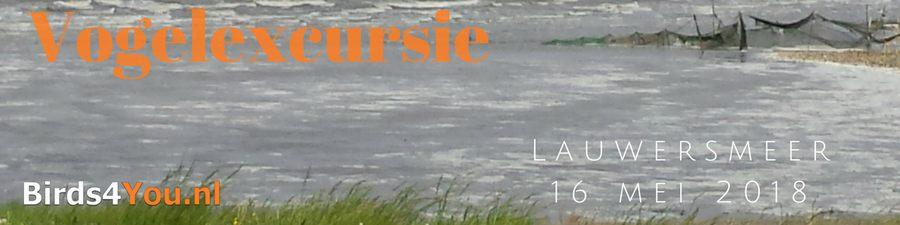 Prive Vogelexcursie verslag Lauwersmeer 16-5-2018