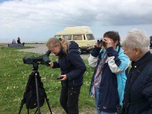 Vogelexcursie Lauwersmeer Andrea & Deelnemers