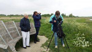 Birding excursion Lauwersmeer Participants Ezumakeeg Noord