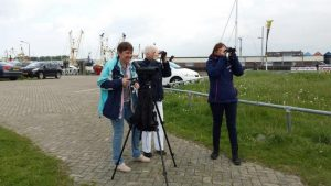 Birding excursion Lauwersmeer Participants Lauwersoog harbor