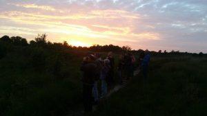 Nachtzwaluw excursie Bij het ven