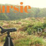 Birding excursion report Drentsche Aa 2 June 2018