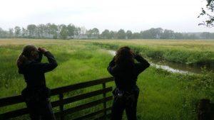 Birding excursion Drentsche Aa Participants