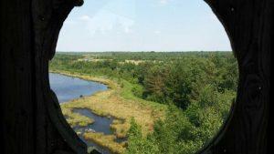 Vogelexcursie Fochteloo Uitzicht uit de 7