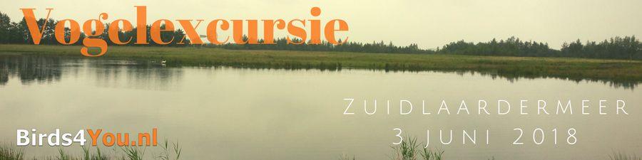Vogelexcursie Zuidlaardermeer 3-6-2018