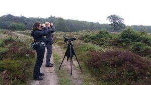 Birding excursion Drentsche Aa Molenveld