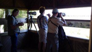 Vogelexcursie Flamingo Deelnemers in de kijkhut