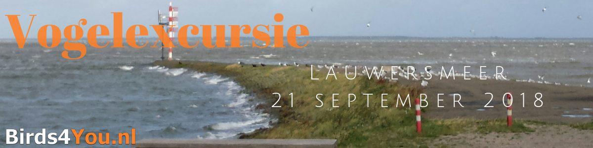 Vogelexcursie verslag Lauwersmeer 21 september 2018