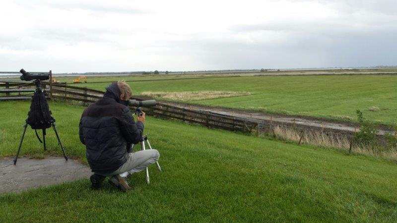 Vogelexcursie Lauwersmeer Uitzicht vanaf de dijk