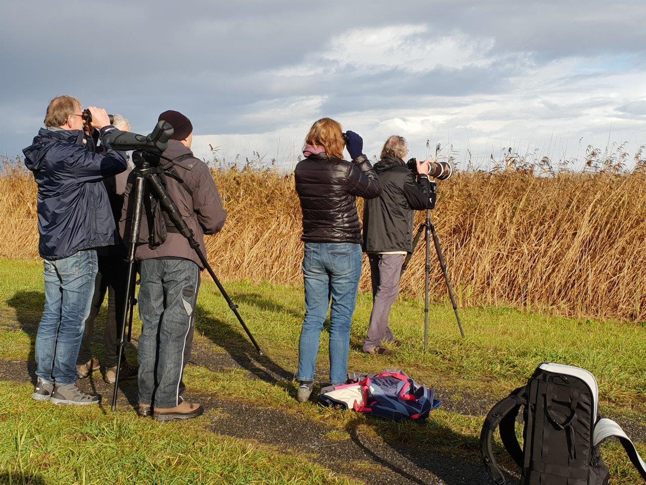 Groeps Vogelexcursie Lauwersmeer 2018 Deelnemers
