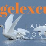 Lauwersmeer groeps vogelexcursie 2018