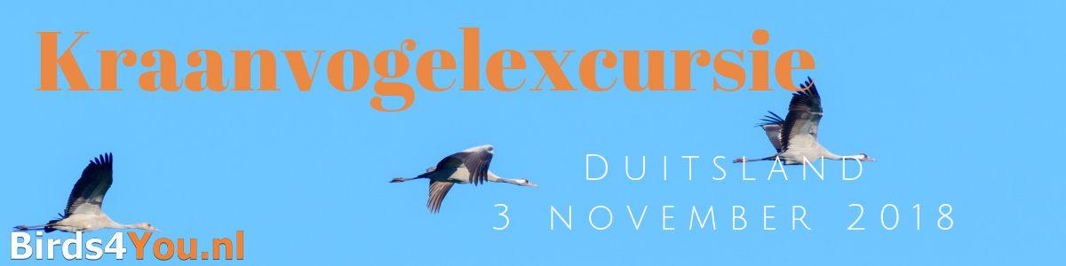 Kraanvogelexcursie 2018, Diepholz Duitsland