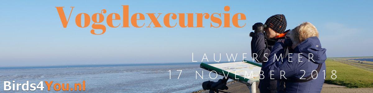 vogelexcursie Lauwersmeer 17-11-2018