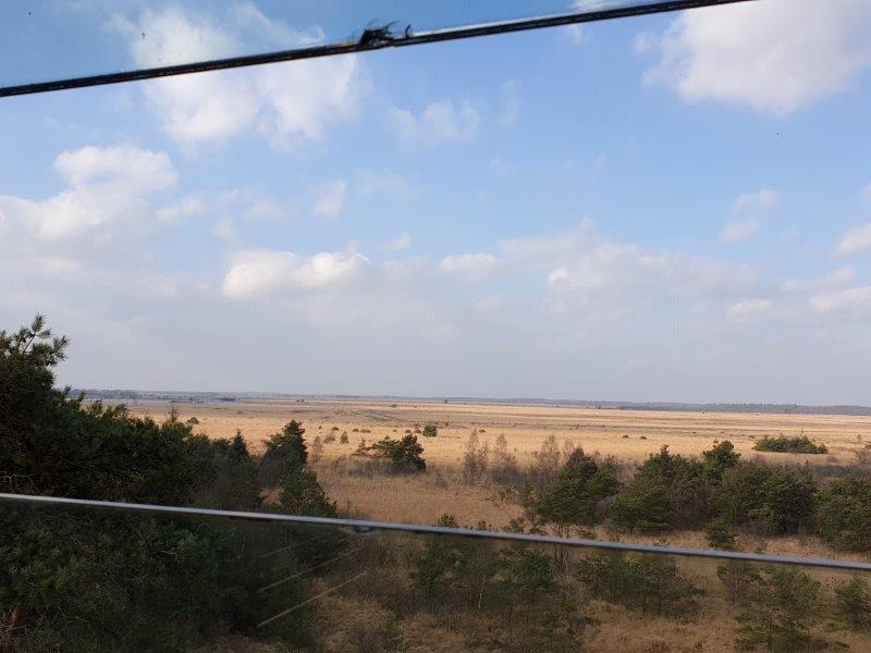 Uitzicht over het Fochteloërveen