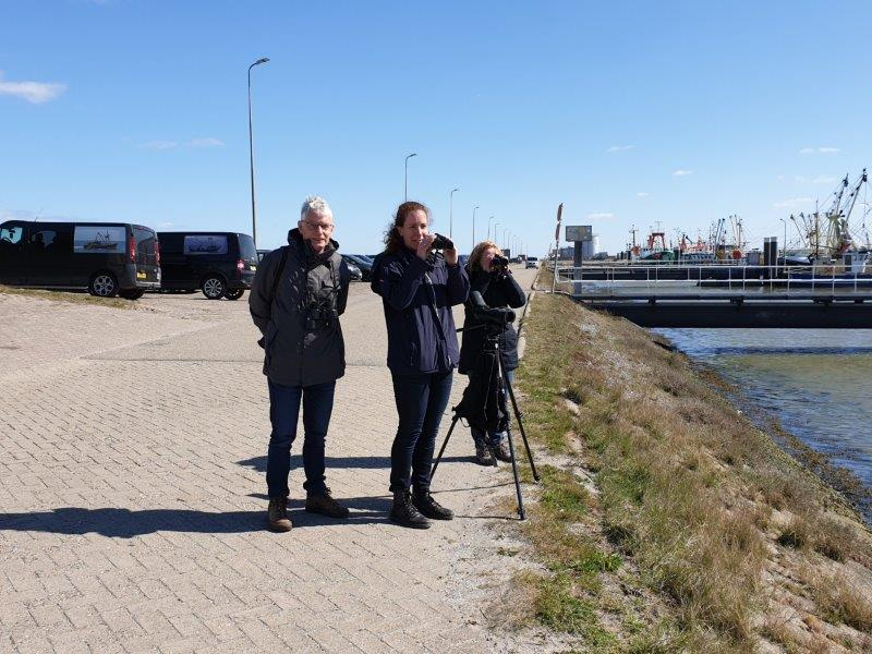 Deelnemers vogelexcursie in de haven