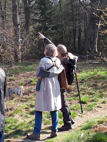 Vogelexcursie Drents-Friese Wold Andrea