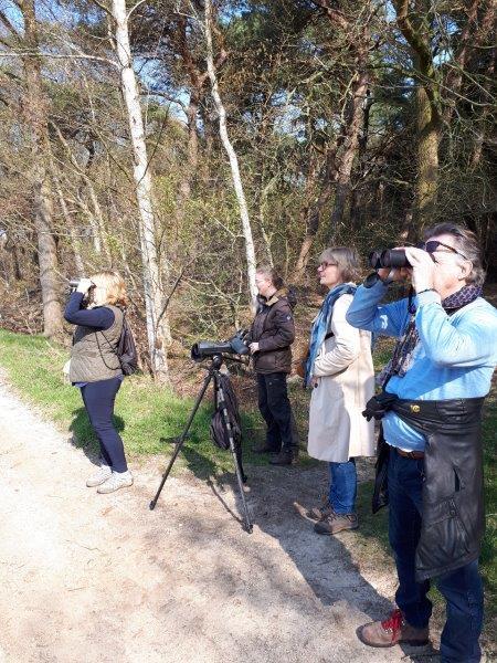 Vogelexcursie Drents-Friese Wold Ook de deelnemers zien ze vliegen