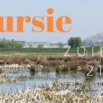 Verslag Privé vogelexcursie  Zuidlaardermeer 21 april 2019
