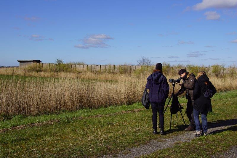 Vogelkijkhut Jaap Deensgat (foto door deelnemer)