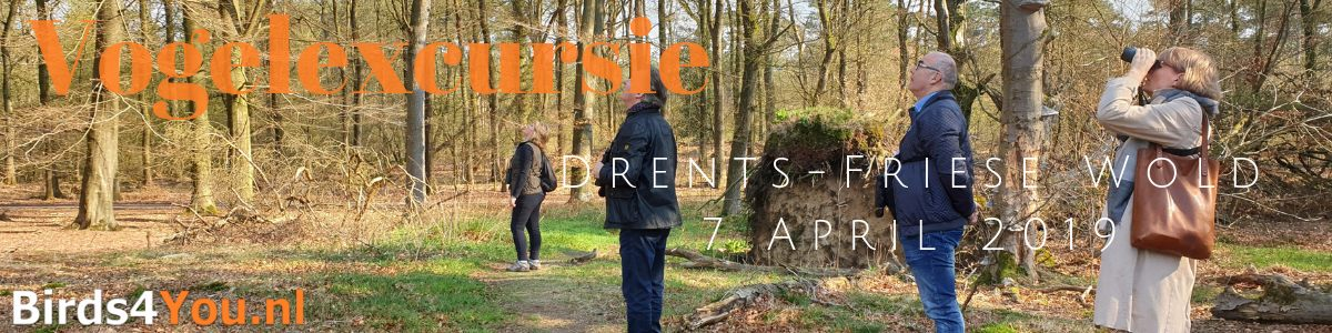 vogelexcursie Drents-Friese Wold 7-04-201