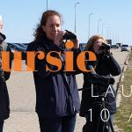 Privé vogelexcursie verslag Lauwersmeer 10 april 2019
