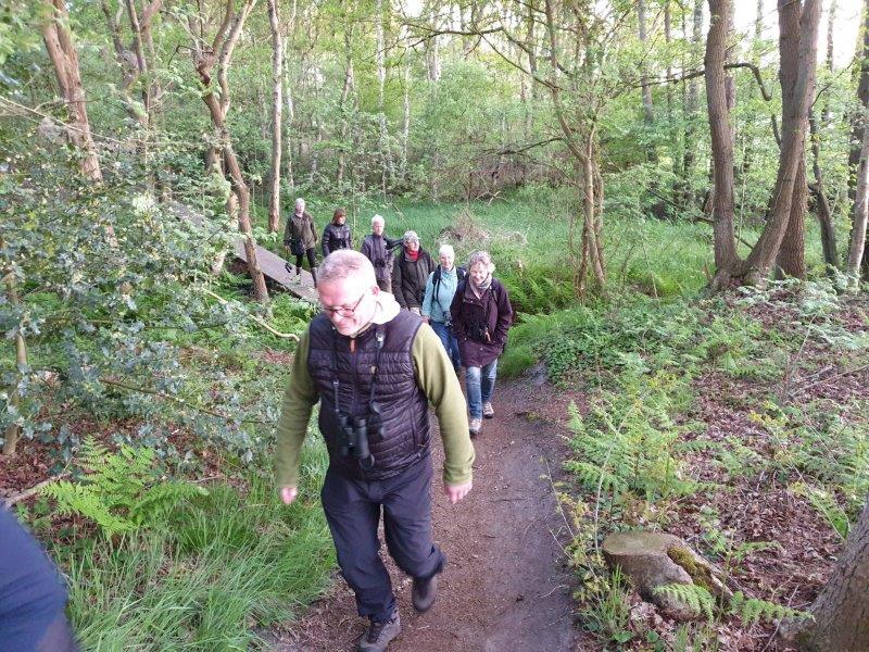 De deelnemers in het bos